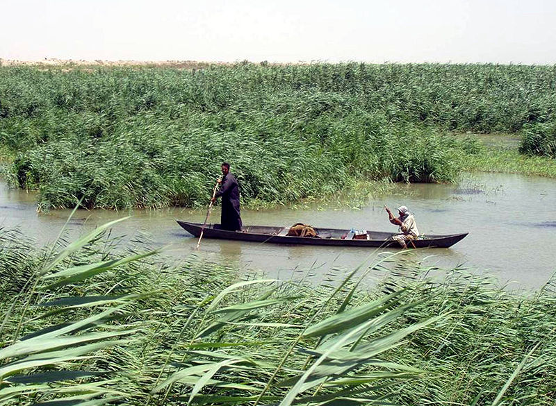 800px-Marsh_Arabs_in_a_mashoof